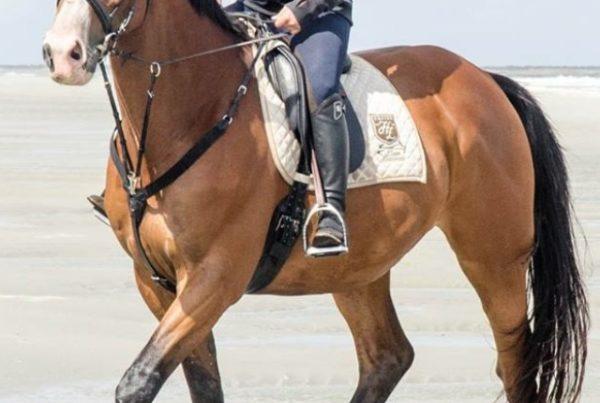 Nolene op haar paard Emiro. Emiro is een cognac-kleurig paard met zwarte benen.